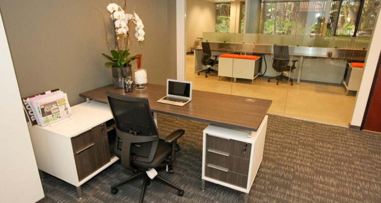 Day Offices, Virtual O...