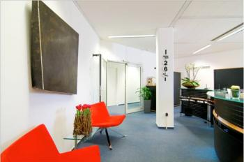 Receptionist Welcoming Area - Wiesbaden Office